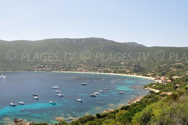 Foto della spiaggia di Campomoro