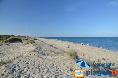 Canet plage office du tourisme - Office du tourisme canet en roussillon ...