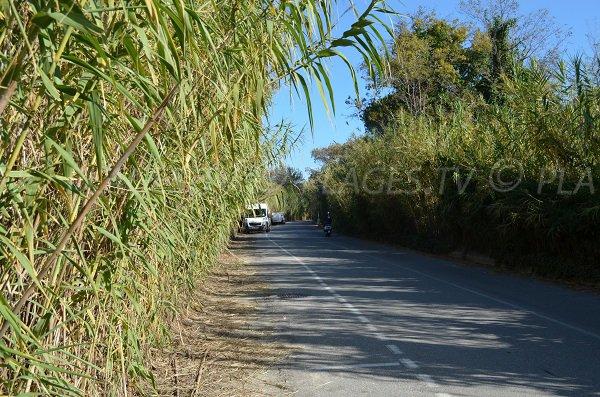 Canoubiers Beach access