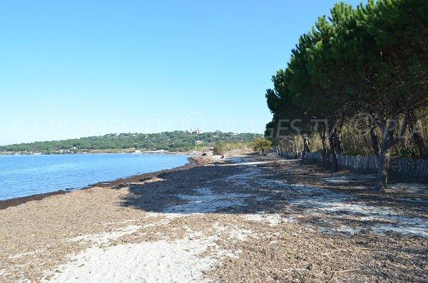 Canoubiers beach in Tropez in winter