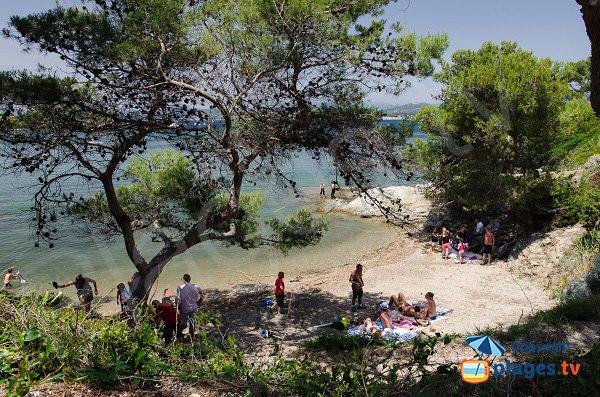 Photo de la plage du Canouvié les Embiez