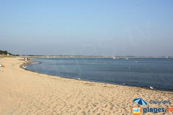 Beach near the Guérinière - La Cantine