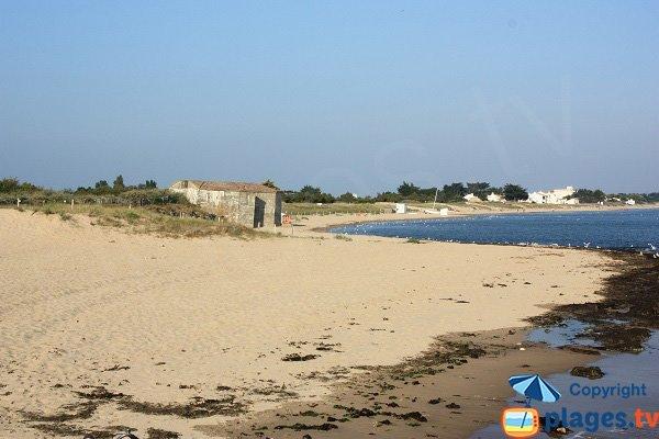 Photo de la plage de la Cantine à Noirmoutier - La Guérinière