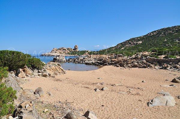Canusellu Beach in Corsica - Belvédère-Campomoro