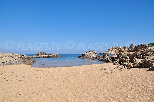 Photo of Canusellu beach in Campomoro in Corsica