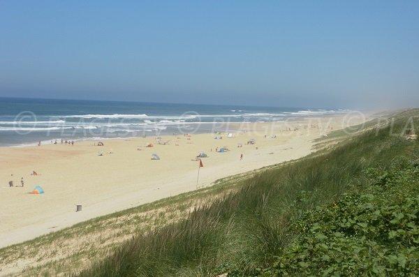 Dunes de la plage du Cap de l'Homy dans les Landes