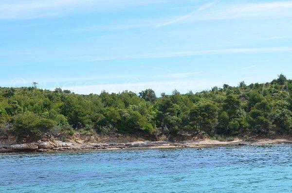 Batterie beach in Bormes les Mimosas
