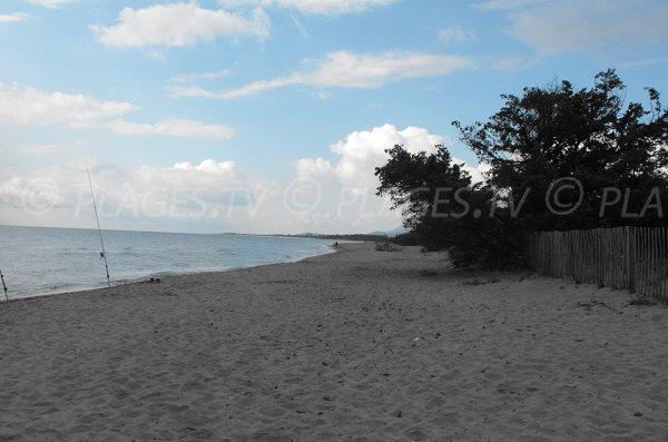 Photo de la plage Cap Sud en Corse