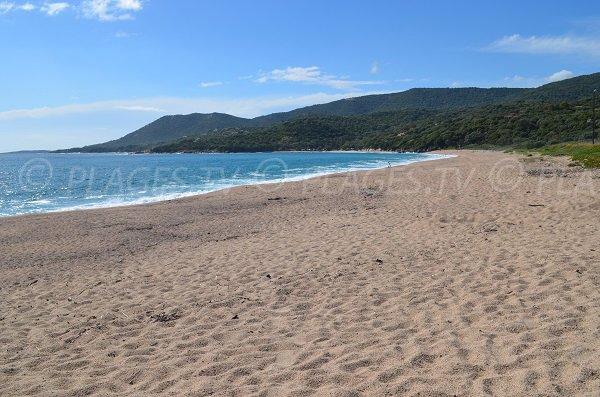 Grande plage secrète à Olmeto