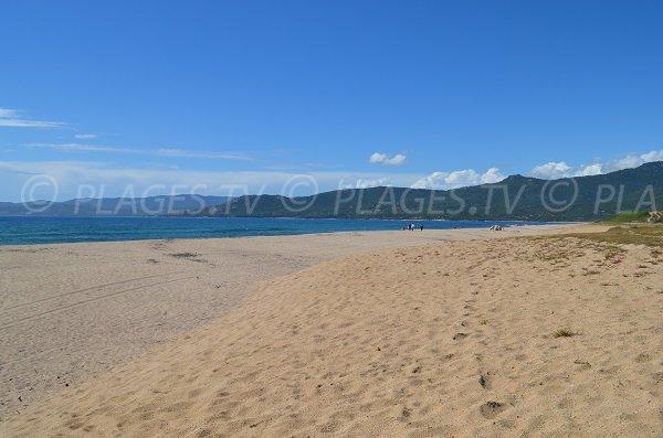 Wild beach in Propriano in Corsica