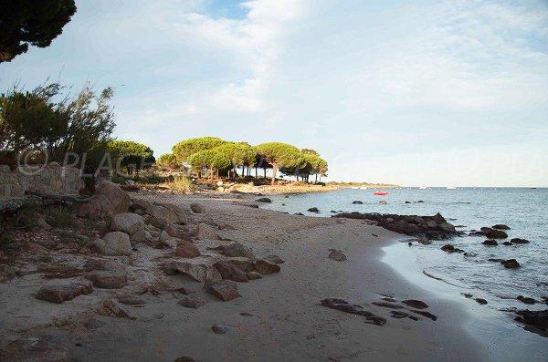 Partie nord de la plage de Caramontinu - Corse du Sud