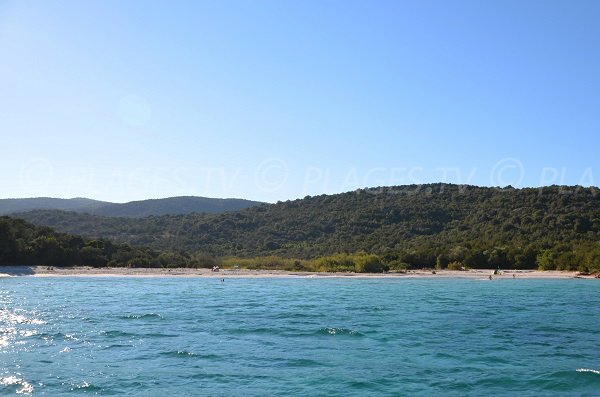 Photo of the Carataggio beach in Porto Vecchio in Corsica