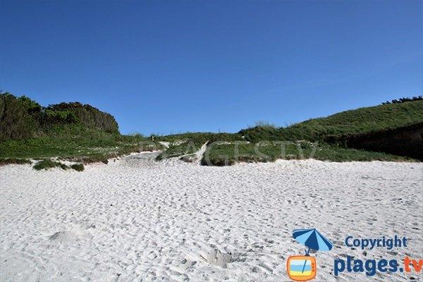 Environnement verdoyant de la plage Le Carn à Ploudalmézeau