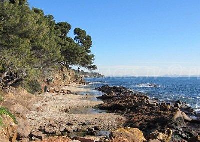 Carqueiranne Beach - France