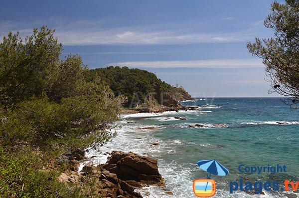 Baignade sur la plage de Cavalas à Saint Mandrier