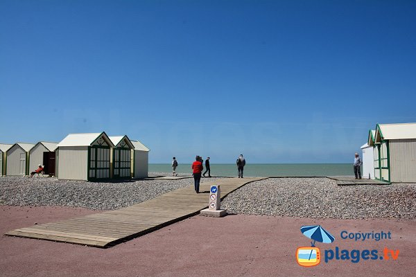 Cayeux beach allowed dogs