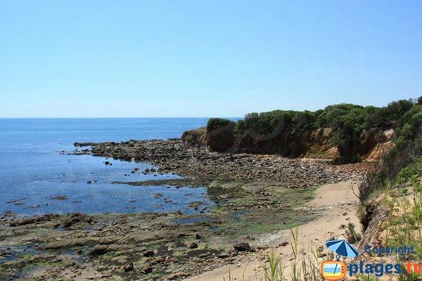 Crique de sable dans la baie de Cayola en Vendée