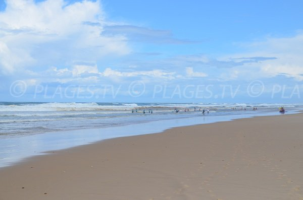 Surfeurs sur la plage de Lacanau Océan