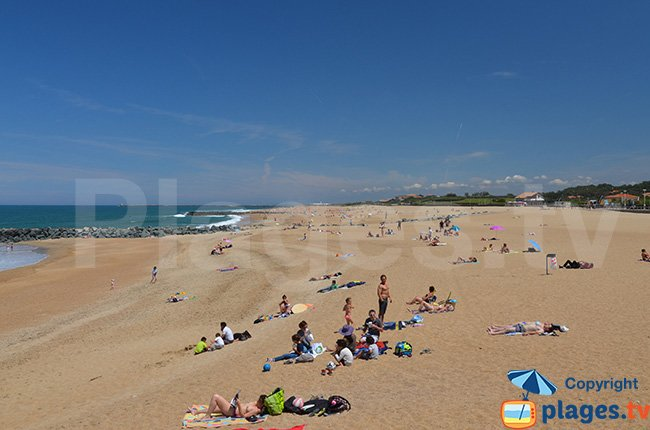 Beach in the centre of Anglet