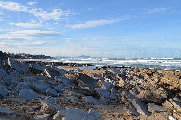 Rochers entre les plages du Centre et d'Uhabia à Bidart
