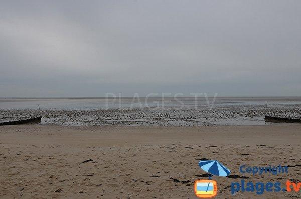 Baignade sur la plage du centre de Les Moutiers en Retz