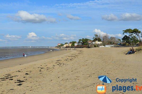Photo de la plage de la Cèpe à Ronce les Bains - La Tremblade