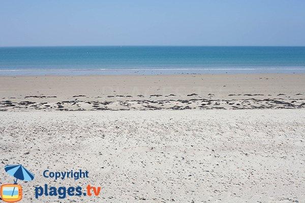 Baignade sur la plage du Champ à Bretteville sur Ay - Manche