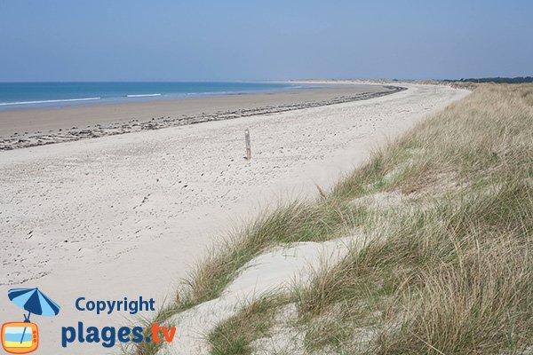 Photo de la plage du Champ à Bretteville sur Ay - 50