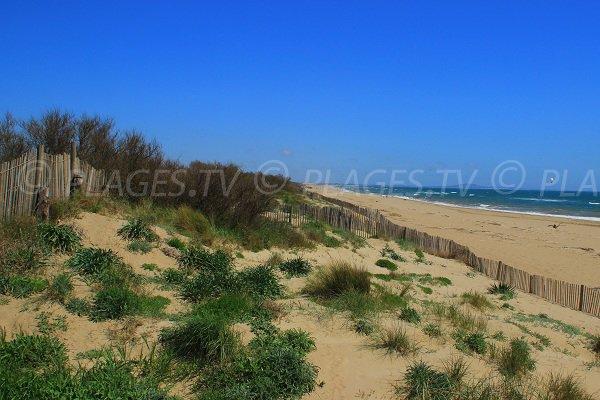 Plage de sable depuis les dunes de Sérignan en direction du Cap d'Adge