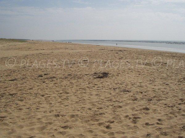 Plage publique de sable des Chardons à La Faute