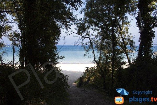 Sentier d'accès à la plage du chateau Serein - Plévenon
