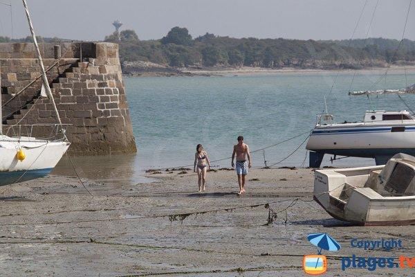 Baignade à proximité du port du Chatelet