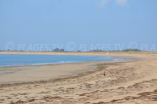 Chaucre beach in Oleron island - France