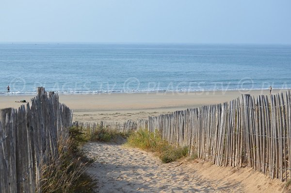 Access to the Chaucre beach - Oleron in France