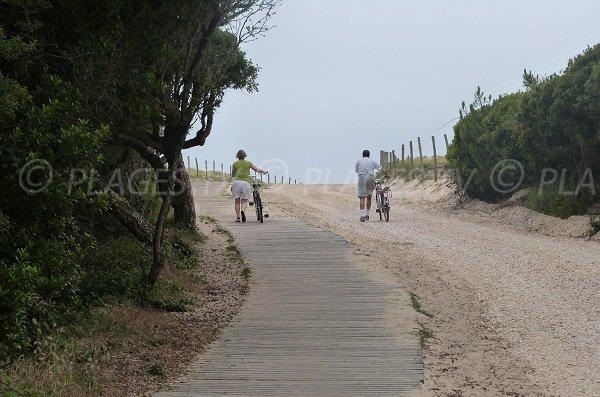 Accesso della spiaggia Chênes Lièges a Moliets et Maâ