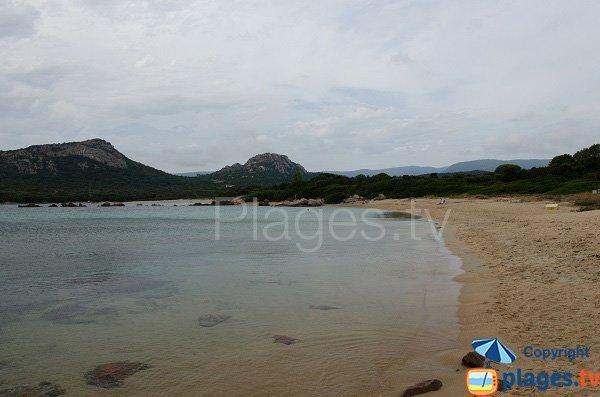 Photo de la plage de Chevanu en Corse