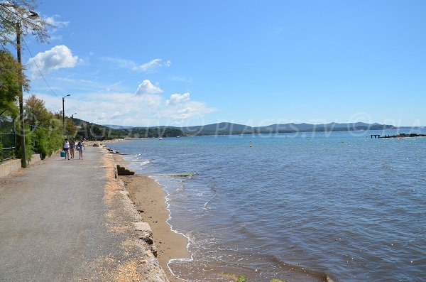 Photo of dog friendly beach in La Londe les Maures in France