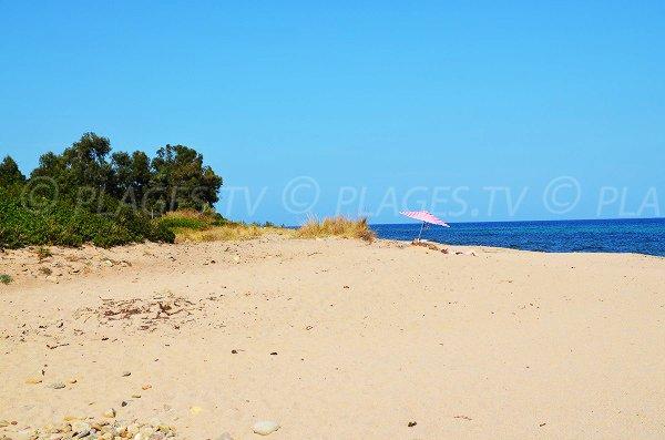Plage sauvage au niveau de la plage de Chiola