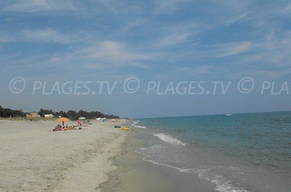 Wild beach in Corsica of the East Coast - Linguizzetta