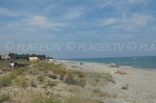Spiaggia sono completamente selvaggi Linguizzetta Corsica