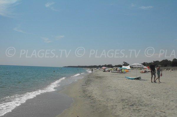Grande plage de sable à Linguizzetta