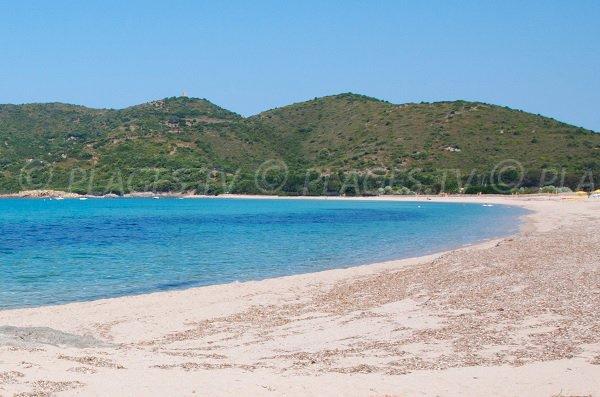 North sand beach in Cargèse in Corsica - Chiuni