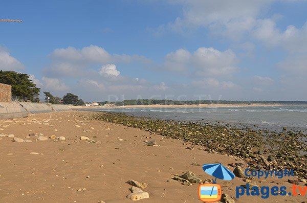 Beach next to the house Clémenceau - St Vincent sur Jard