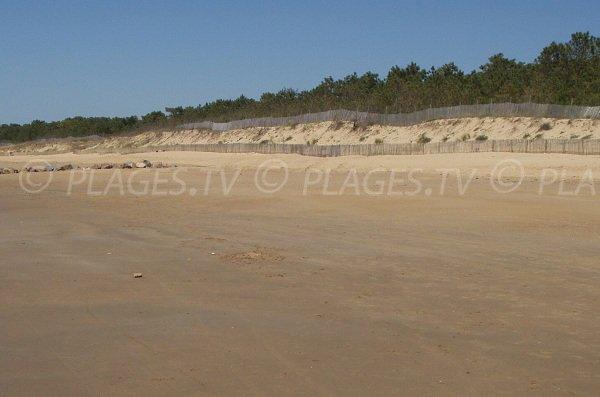 Dunes of Clémenceau beach in La Tranche sur Mer - France