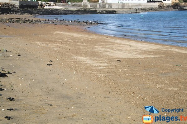 Zone gauche de la plage du Clouet