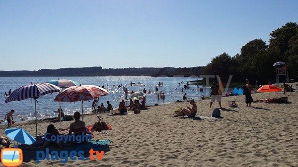 Plage au bord du lac du Léon dans les Landes