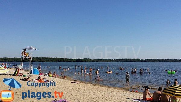 Plage surveillée le long du lac du Leon - Landes