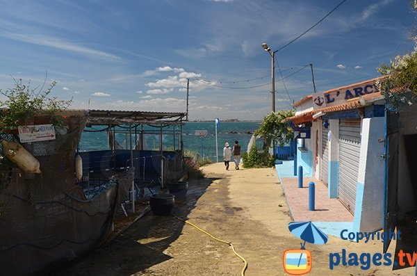 Restaurants autour de la plage des Combattants - Port le Bouc