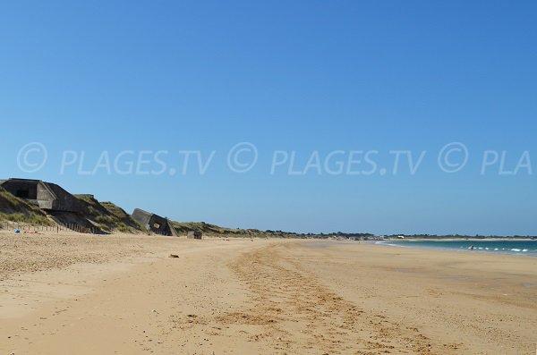 Dunes de la plage des Baleines à St Clément les Baleines