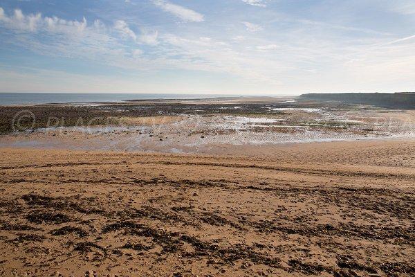 Photo de la plage au niveau de la falaise des Confessionnaux au Lion sur Mer